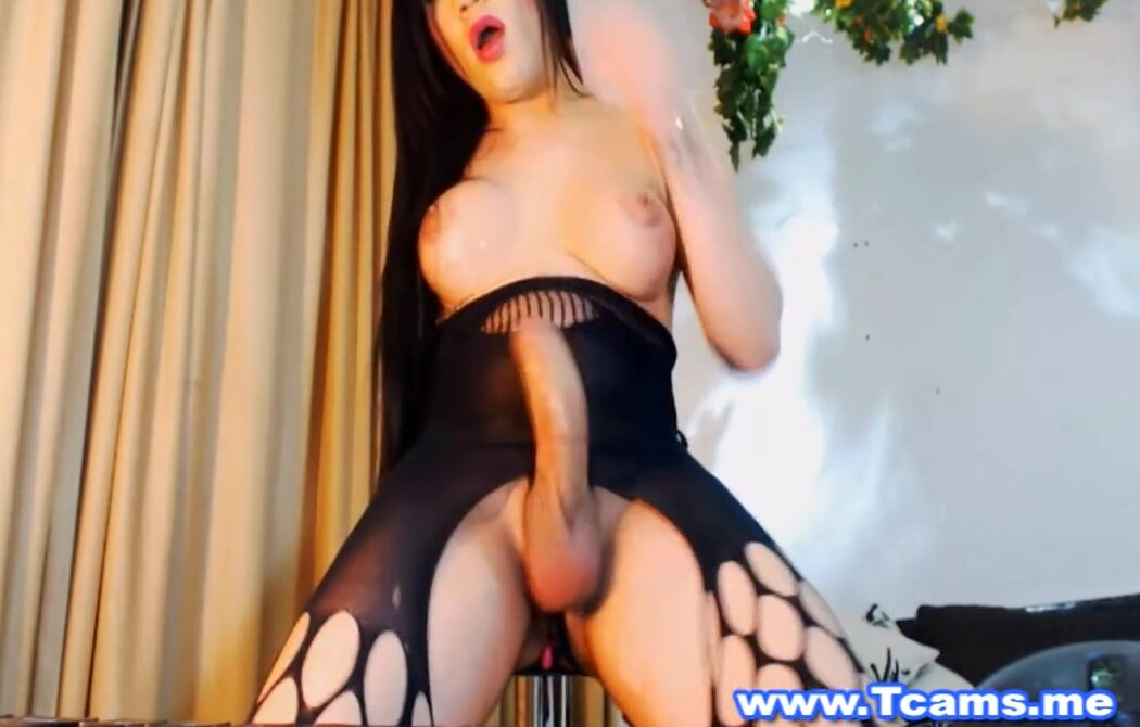 Shemale Big Cock Domination